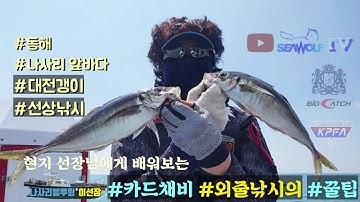 #꿀팁~ 고수에게 배워보는 고등어&전갱이 외줄낚시 (강력추천)