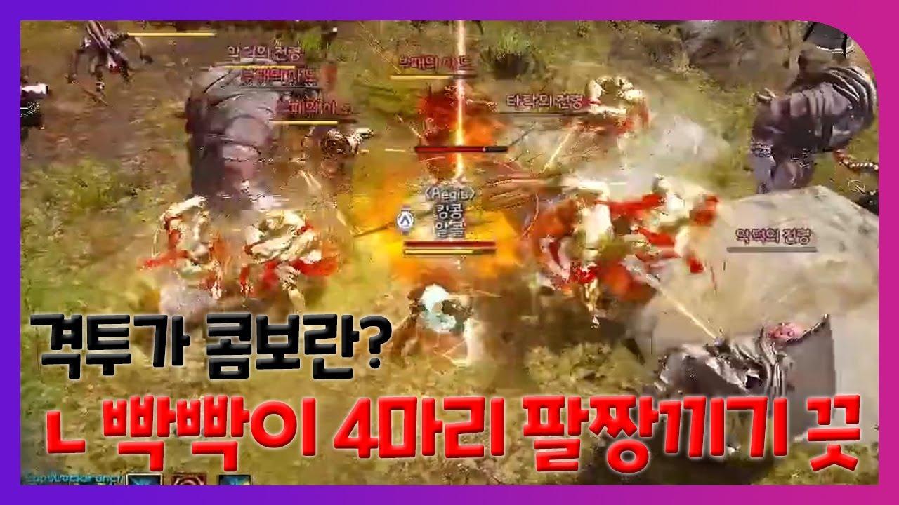 BDO Striker PvP # 검은사막 킹콩 각성격투가 PvP #4 [Aegis]