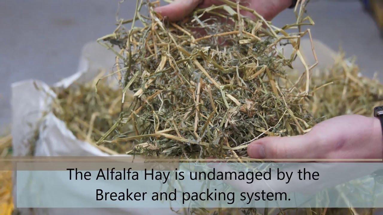 Alfalfa Hay Bale Breaking and Packaging
