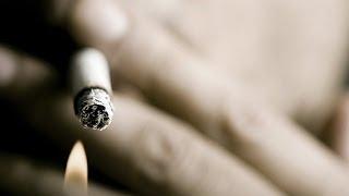 Курение и репродуктивное здоровье. Школа здоровья 26/04/2014 GuberniaTV