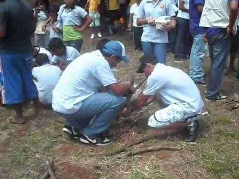 Camporee 2012 CLUB COSMOS.wmv