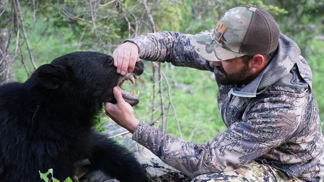 Black bear hunting video #4