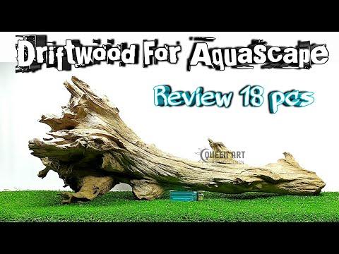 review-kayu-driftwood-aquascape-keren-untuk-aquarium