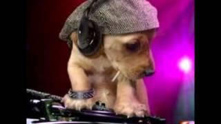 Abba   Super Trouper Ced Tecknoboy Bootleg Mix)