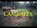Caníbales Ibu Gogo en Indonesia - Documentales en Español