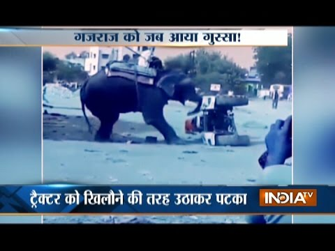 MP Video: Angry Elephant Attacks at Tractor on Road in Bhind