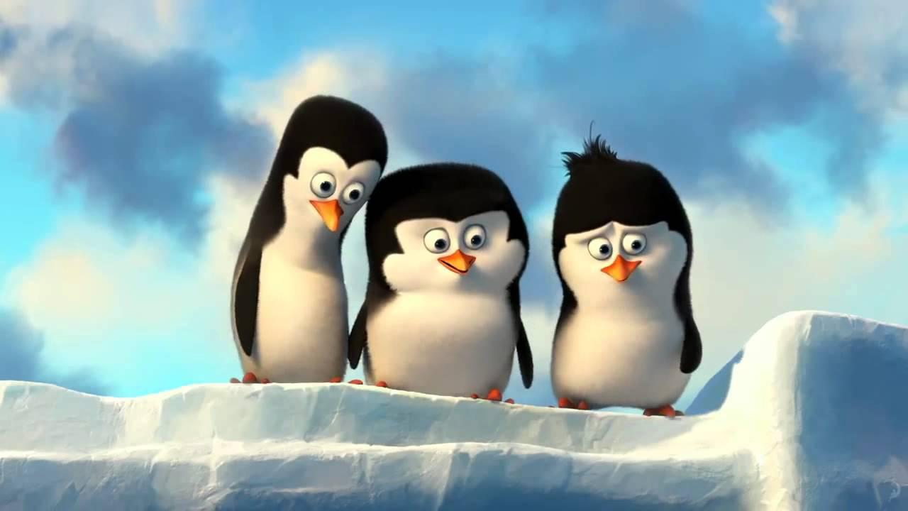 Три пингвина картинка на аватар