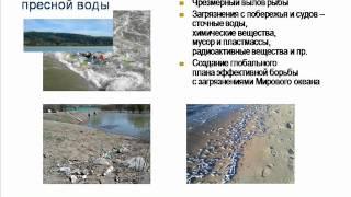 Глобальные экологические проблемы 21 века(, 2012-05-05T15:08:19.000Z)