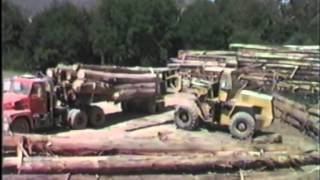 Unloading Alpine Ash at the Mitta Mitta Sawmill