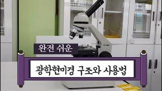 [초등과학]5학년1학기_다양한 생물과 우리 생활_광학현…