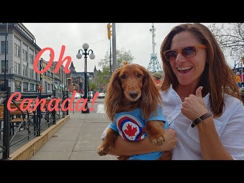 BB the traveling dachshund visits Ottawa, the capital of Canada