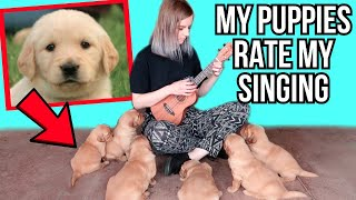 singing to my 6 puppies *so cute you will cry*