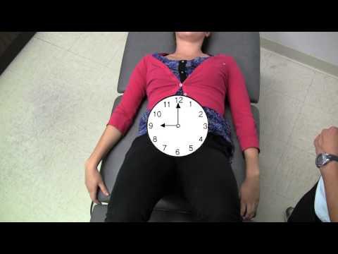 Michigan State University Rehabilitation: Pelvic Clock