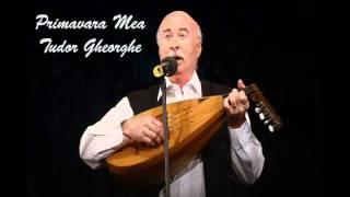 Tudor Gheorghe - Primavara Mea