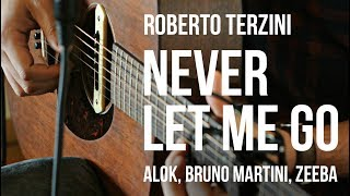 Baixar Never Let Me Go - Alok, Bruno Martini, Zeeba (Cover)