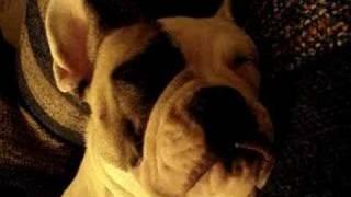 Beyah Snoring