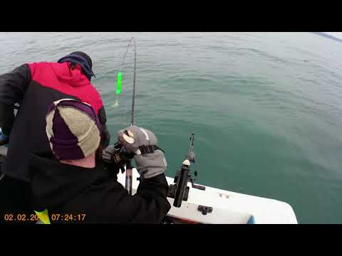 Homer Alaska Winter King Fishing