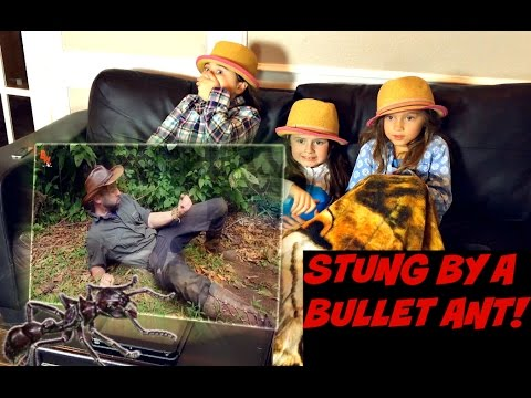 "Thumbnail: Brave Wilderness ""STUNG by a BULLET ANT!"" REACTION!"