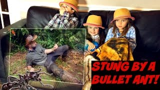 "Brave Wilderness ""STUNG by a BULLET ANT!"" REACTION!"