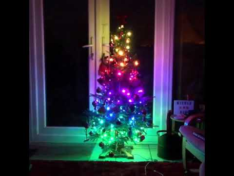 cheaper a2e64 a317d Fun with Twinkly smart Christmas tree lights!
