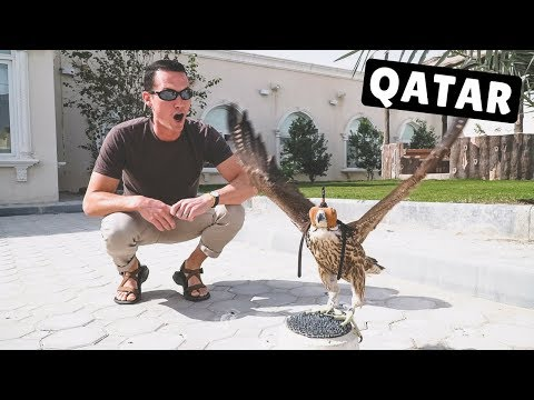 MIDDLE EAST CRUISE STOP #4: DOHA WITH LOCALS!