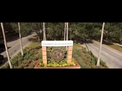 USF Tampa Campus   University of South Florida
