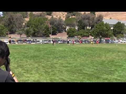 Video 455