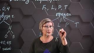 Решение комбинаторных задач методом перебора. 6 класс.