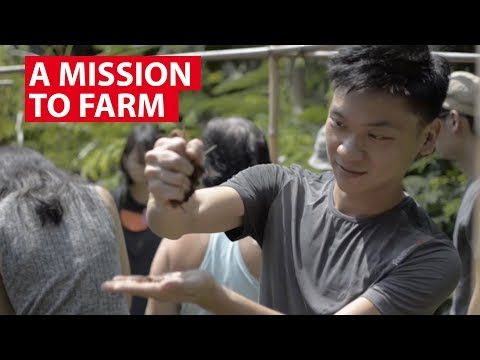 A Mission to Farm | On The Red Dot | CNA Insider