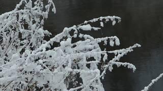 Зимняя природа, прогулка по лесу под красивую музыку