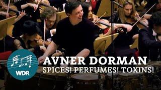 アヴネル・ドルマン - Avner Dor...