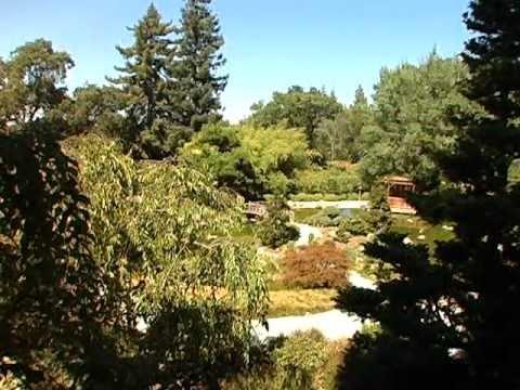 Hakone Gardens - Saratoga, CA