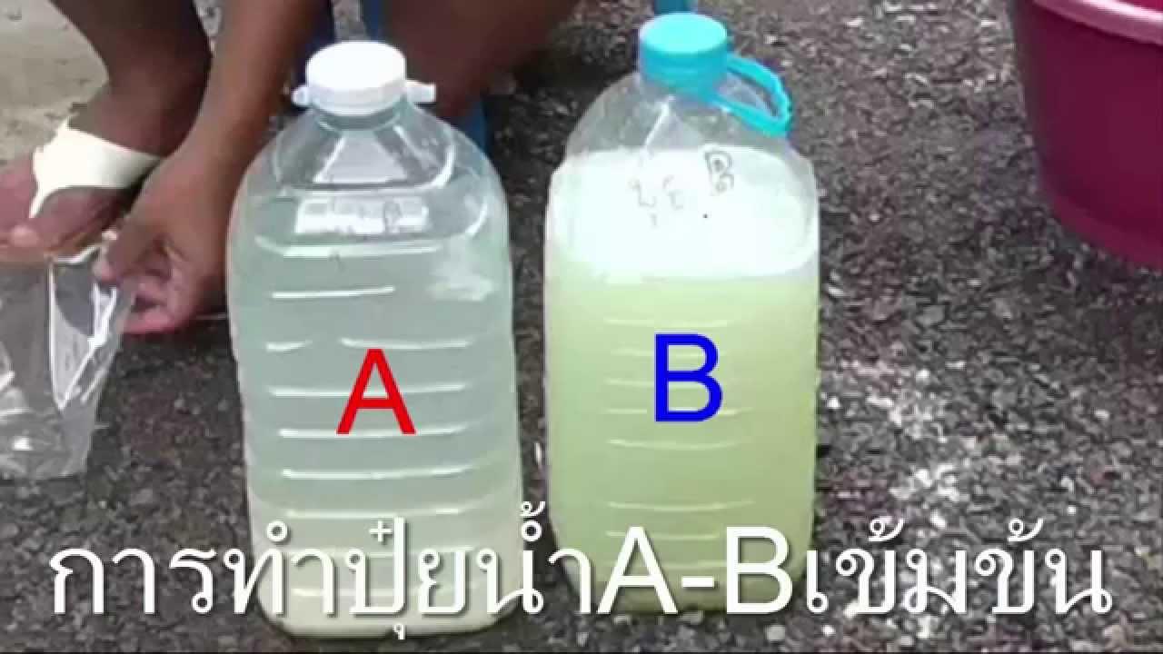 วิธีผสมปุ๋ยน้ำเข้มข้นA-B