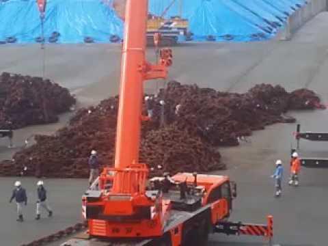 [DONGBANG] HSHI ANCHOR CHAIN OCEAN TRANSPORTATION(2)