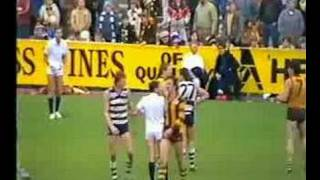 R12 1985 Hawthorn v Geelong brawl part 1