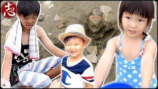 【おでかけ】天気が良かったのでアレ大量に取ってきた!!ママツー本気すぎて怖い(笑)【2017年6月】ココロマンちゃんねる beach clamming with family!! #1837 thumbnail