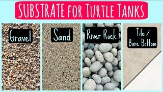 SUBSTRATE for Turtle Tanks - Sand, Gravel, Tile | Turtle 101