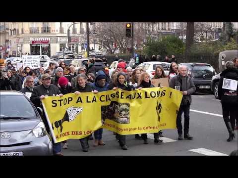 Stop aux tirs sur les Loups - Paris février 2019