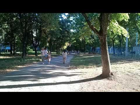 День знаний стартовал_видео