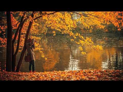 Best Relaxing Flute Music *1: Chinese Flute Music, Meditation Flute Music, Calming Music