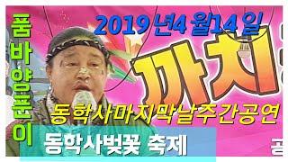 양푼이품바 / 동학사 벚꽃축제  마지막날 공연