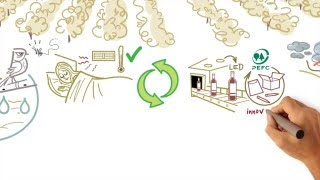 ABADIA RETUERTA RSC -MrScribing- CAST.