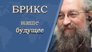 Анатолий Вассерман - БРИКС наше будущее