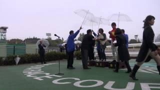 第53回ゴールドウィング賞(SPⅠ)は大畑雅章騎手騎乗のヒメカイドウ号が優勝