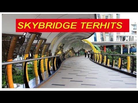Ikoniknya Jembatan Eco Skywalk di Jakarta