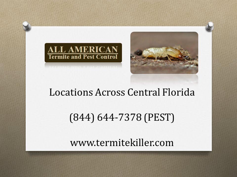 All American Termite & Pest Control Reviews - Central Florida Exterminators