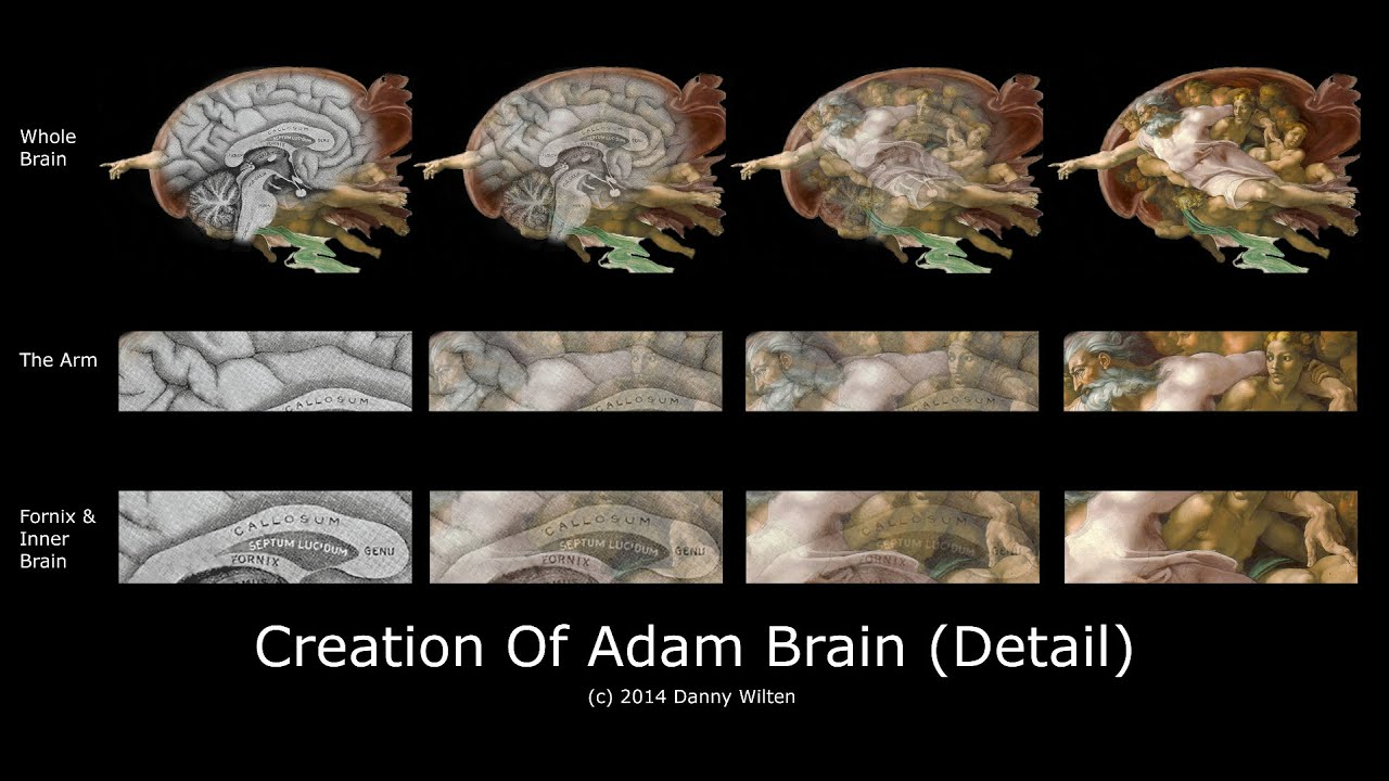 Til that god and his surroundings in the painting the for Creation of adam mural