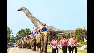 วาเลนไทน์ สวนนงนุชพัทยา แห่ขันหมากคู่รัก 99 คู่ จดทะเบียนบนหลังช้าง หุบเขาไดโนเสาร์