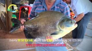 Uni Pesca esportiva