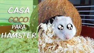 CASA COCO para Hamster 🐹 /Manualidades Mascotas/